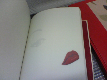 llieno-cahier.JPG