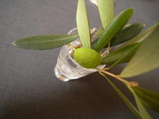 olivier%2A-2.jpg